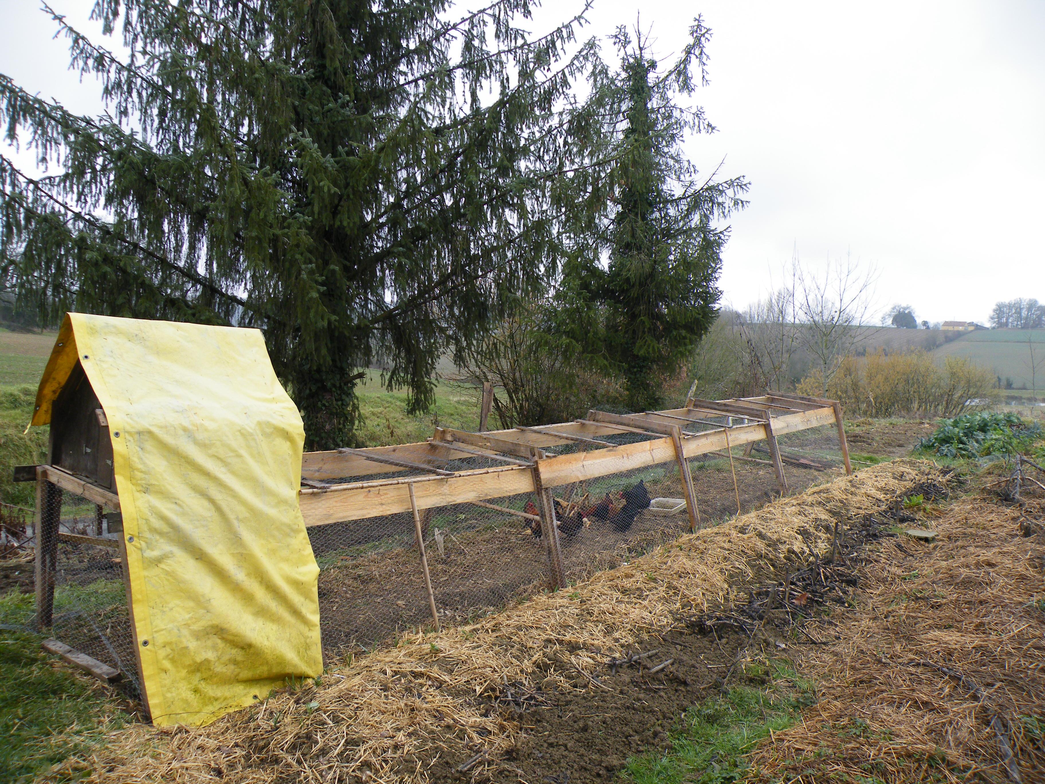 Tracteur à poules   Graine de flibuste - Cabane Pour Poule